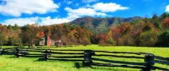 Как оформить самозахват земли в собственность