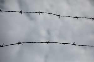 Как уволить осужденного к лишению свободы