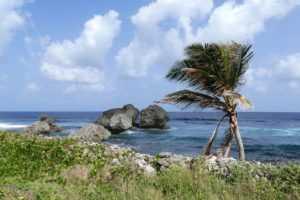 Как получить гражданство Гренады за инвестиции?
